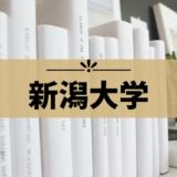 【新潟大学】受験におすすめのホテル集!徒歩圏内や駅近ホテルまとめ